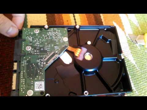 Жорсткий диск Western Digital Blue 1TB 7200rpm 64MB WD10EZEX 3.5 SATA III