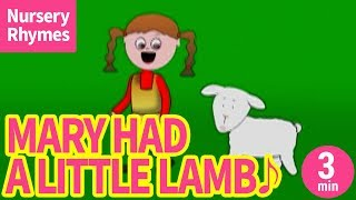 Mary Had A Little Lamb【Nursery Rhyme, Kids Song for Children】 Mar...