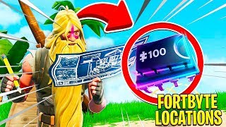 FORTNITE FORTBYTE #32 | ACCESSIBLE BY WEARING KYO PET BACK BLING AT THE NORTHERN MOST POINT