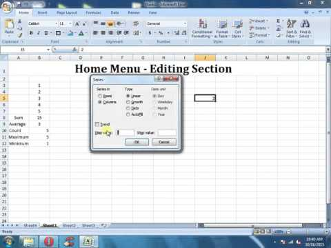 MS Excel Tutorials - Home Menu Editing Section in Microsoft Excel