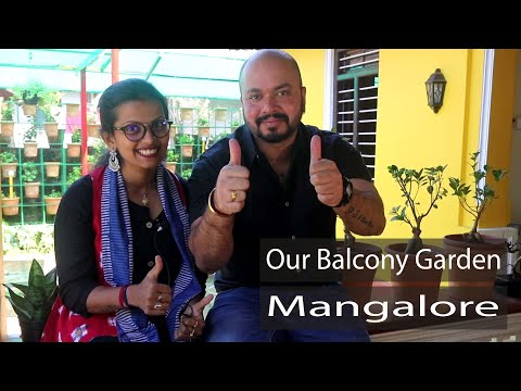 0 - Our Balcony Garden - Kadri Kambla Road