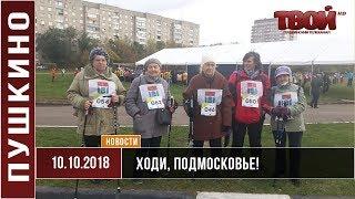 Скандинавская ходьба - Ходи, Подмосковье!