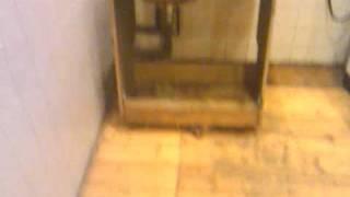 Чистая кухня.(, 2012-01-15T19:52:17.000Z)