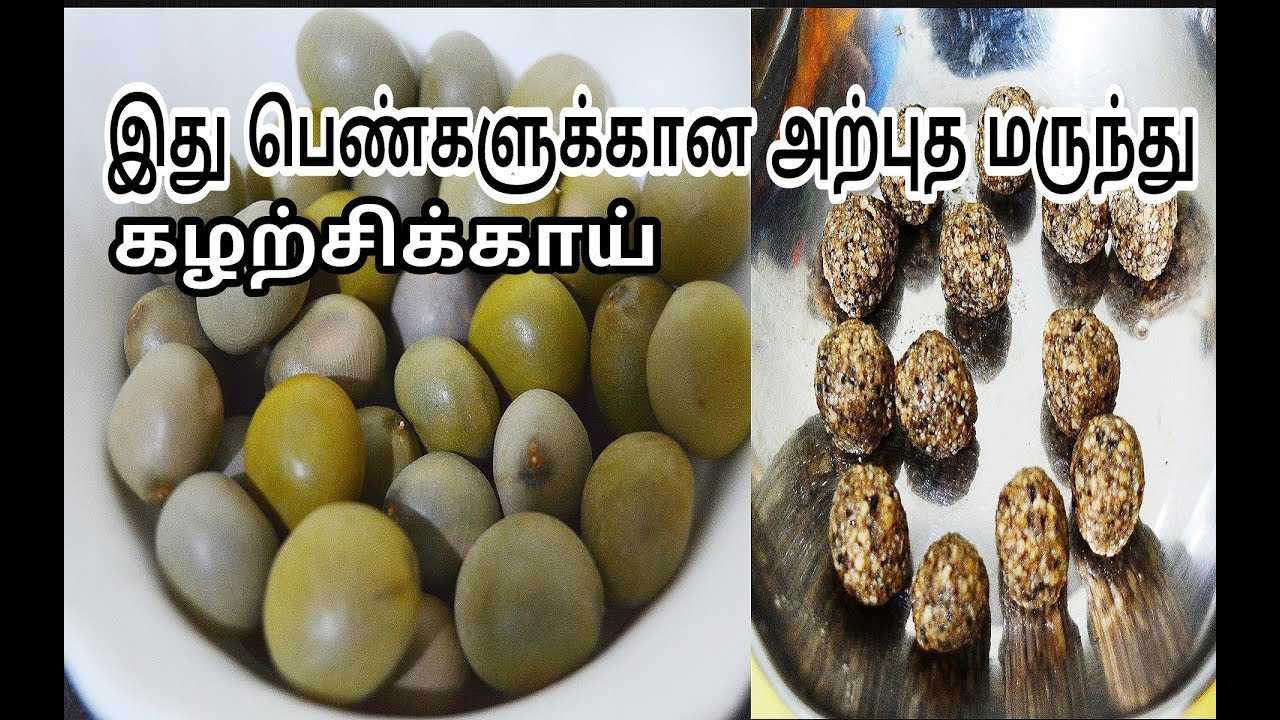 இது பெண்களுக்கான அற்புதமான மருந்து-கழற்சிக்காய்|Health Tips for Women in  Tamil-Physic Nut