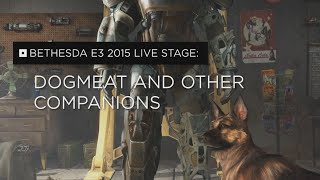 Fallout 4 – Dogmeat & Other Companions