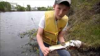 Fishing For Bottom Feeders