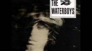 Watch Waterboys It Should Have Been You video
