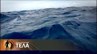 Морская болезнь | Приключения тела