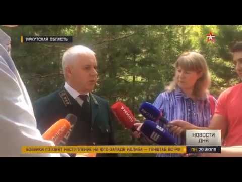 В трех российских регионах введен режим ЧС из за лесных пожаров