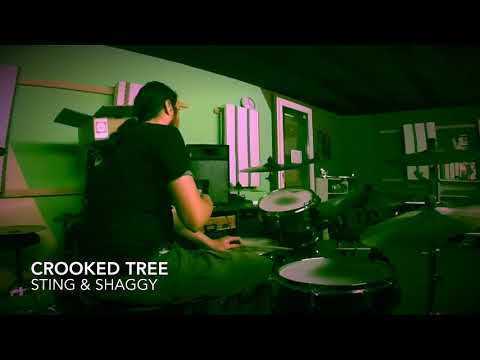 Sting & Shaggy/Crooked Tree/Drum Cover by flob234