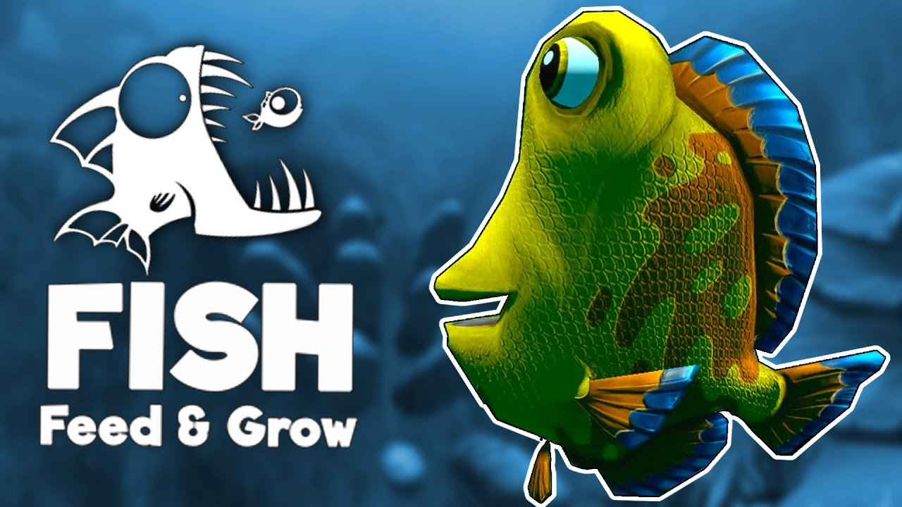 Giant taisuke ocean 39 s derpiest fish feed and grow for Feed and grow fish the game