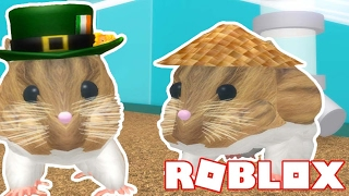 Becoming A Hamster On Roblox! w/JoeyGraceffa & Smajor