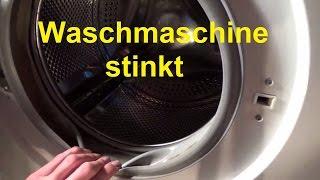 Waschmaschine stinkt riecht Waschmaschine reinigen sauber machen Schimmel