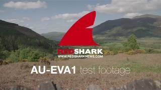 Panasonic EVA1 test reel