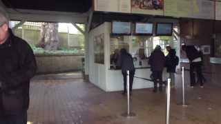 RHS Wisley Garden   -  Ticket  - Inngöngumiðinn