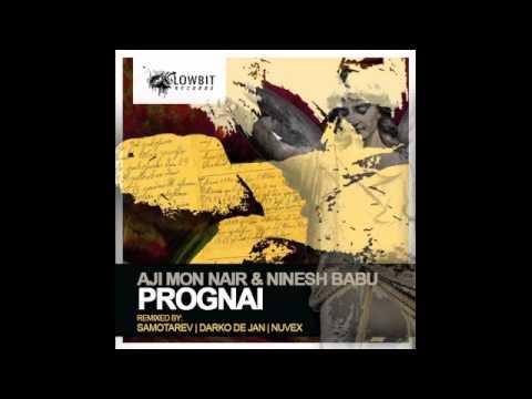Ninesh Babu & Aji Mon Nair - Prognai (Nuvex Remix)