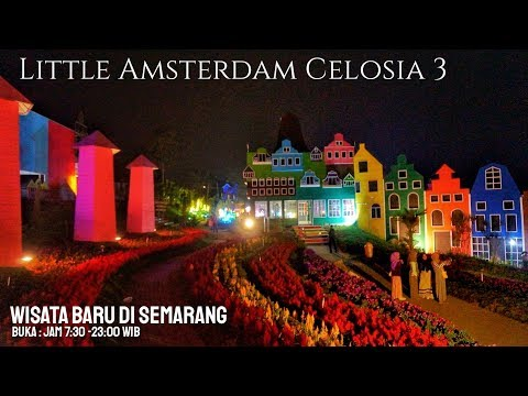 little-amsterdam-celosia-3-semarang-di-malam-hari-taman-bunga-celosia-bandungan-semarang
