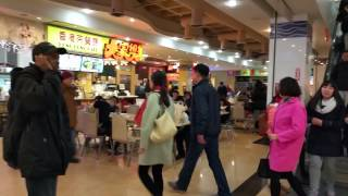 New World Mall Chinese Food Court in Flushing, New York