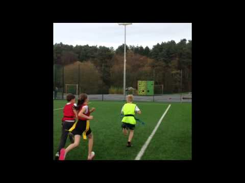 Greenland House Tag Rugby