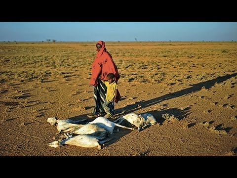 Climate Change-Induced Droughts in Africa Spawn Food Shortages, Mass Child Malnutrition