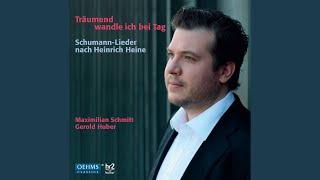 Liederkreis, Op. 24: No. 7. Berg