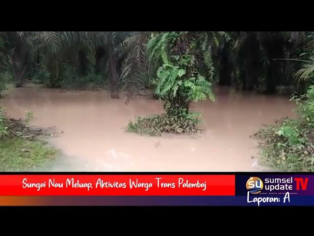Sungai Nau Meluap, Aktivitas Warga Trans Palembaja Lahat Sempat Lumpuh