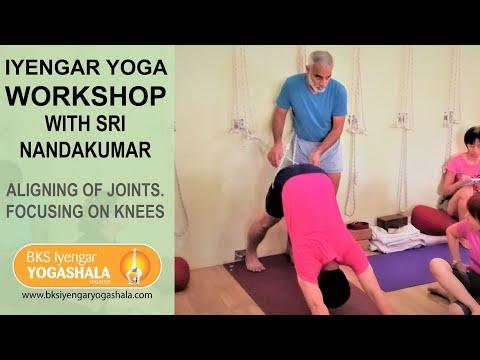 Iyengar Yoga Workshop with Sri Nandakumar December 2017