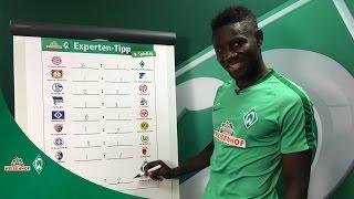 WIESENHOF: Werder-Experten-Tipp 8. Spieltag 16/17