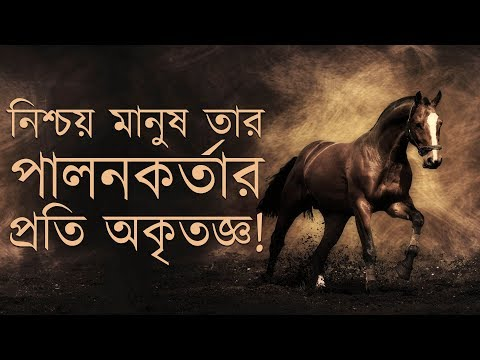 Amazing Recitation of Al Quran Surah AL ADIYAT by Omar Hisham Al Arabi (Bangla Subtitle)