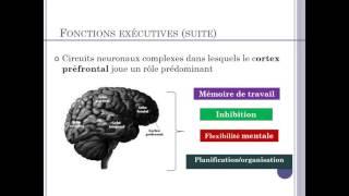 La mémoire de travail et les fonctions exécutives dans le contexte scolaire
