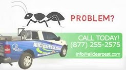Get Rid of Ants Yourself Learn How All Clear Pest Control Corona Riverside CA
