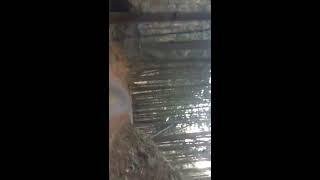 埼玉県 林道 樽沢線(通行止め) thumbnail