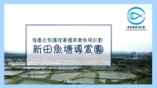 優質養魚場計劃 - 參觀魚塘篇:參觀香港美麗的魚塘、加工場及 試食優質魚