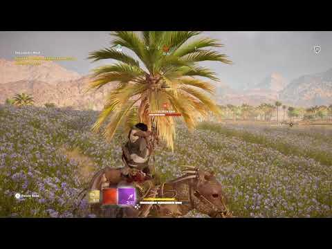 Assassin's Creed® Origins Shola vs The Iron Ram