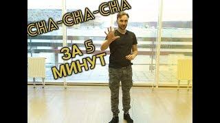 CHA-CHA-CHA ЗА 5 МИНУТ