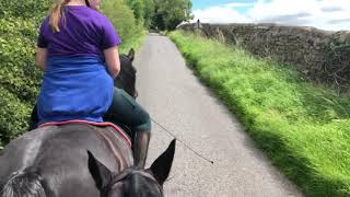 Horse Riding in Yorkshire: The Gate Ride: Part 3: The Journey Home! Tractors!!