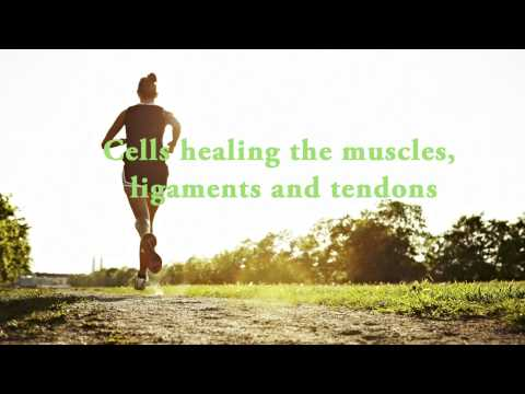 Cells healing the body Muscles, ligaments and tendons Guided mediation