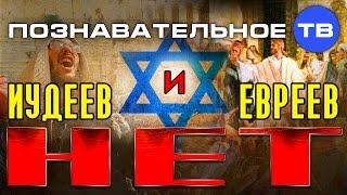 Иудеев и евреев нет (Познавательное ТВ, Валентин Катасонов)