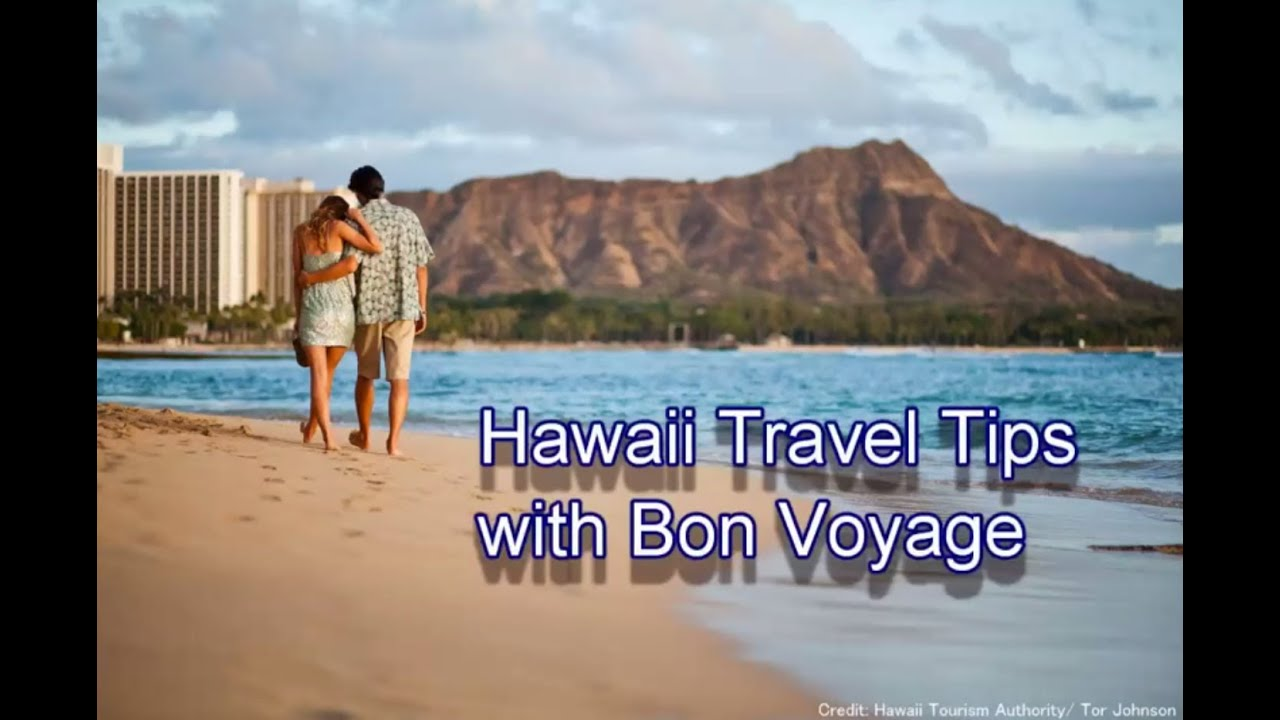Image result for Traveling Tips - Bon Voyage