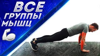 Функциональная тренировка на все группы мышц в домашних условиях