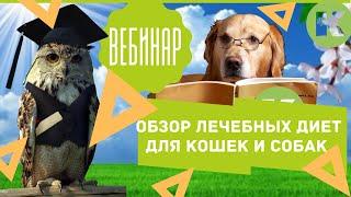 Вебинар. Обзор лечебных диет для кошек и собак. Выбор корма. Ветклиника