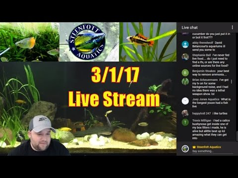 🔴 Aquarium Livestream - Prizes Shipped today