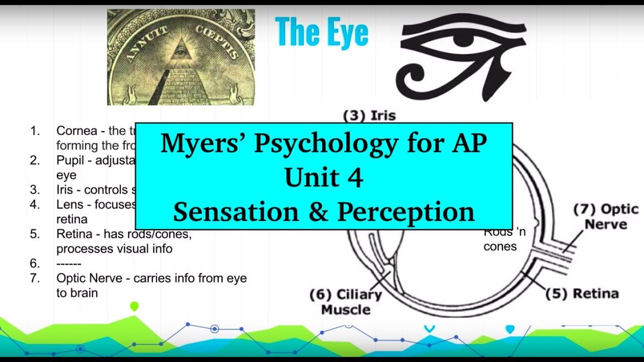 Unit 4 Myers' Psychology for AP - Part 1