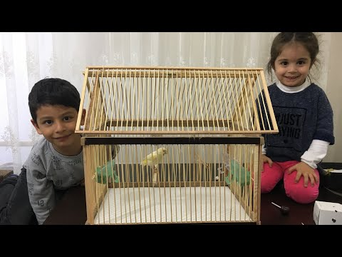 KUŞ KAFESİ YAPIMI (Wooden Bird Cage Making)