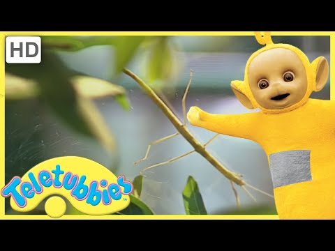 ★Teletubbies ★ Bugs Pack 1 ★ Hour Compilation! ★ Classic Teletubbies Compilation ★