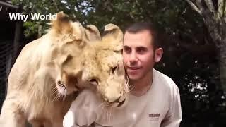 САМОЕ МИЛОЕ ВИДЕО НА ЗЕМЛЕ необычная дружба животных и людей