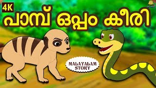 Malayalam Story for Children - പാമ്പ് ഒപ്പം കീരി | Moral Stories | Malayalam Fairy Tales |Koo Koo TV