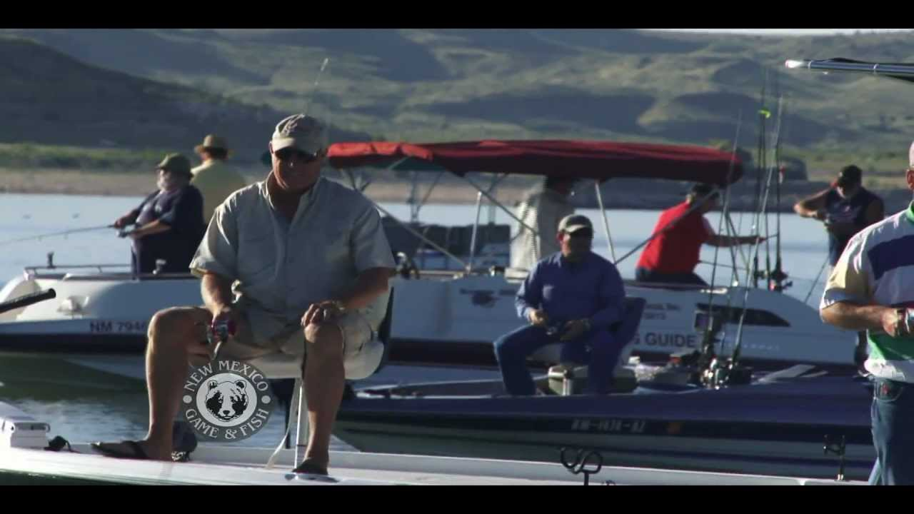 White bass fishing at elephant butte lake state park youtube for New mexico game and fish login