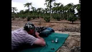 rifle  22 imbel md1 teste de precisão