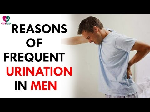 How Does Female EJACULATION or SQUIRTING Work ✅ from YouTube · Duration:  4 minutes 24 seconds